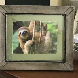 Adorable sloth in handmade leather frame